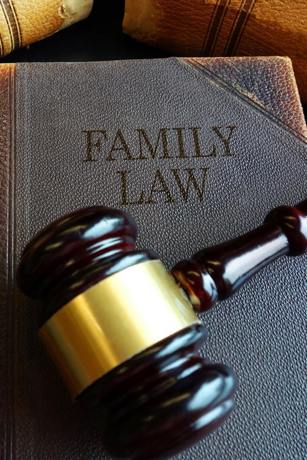 Jane Randall Rock Hill Sc Child Custody Cases
